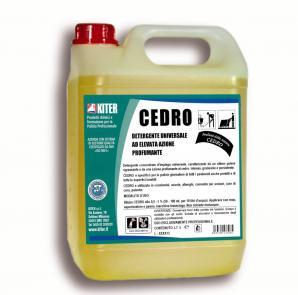 Nettoyage courant CEDRO