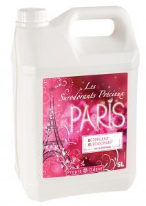 Nettoyage courant DS PARIS